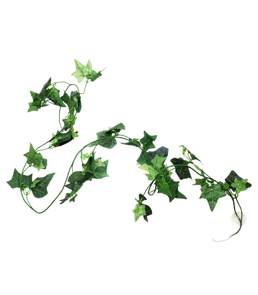 "TP009 75"" boston ivy  tiffany"